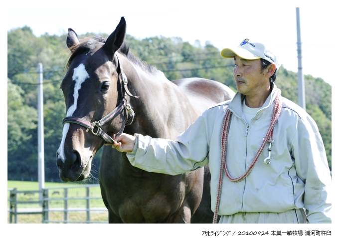 100924_Asahi-Rising_本巣一敏牧場(浦河町)_28294DX.jpg