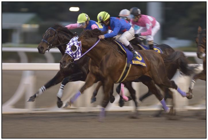 10R_Furioso&K.Tosaki_121229TCK_58th-Tokyo-Dai-Shoten(G1-10F)_14039D4.jpg