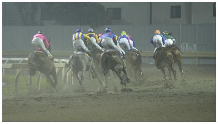 10R_Lap1_121017Kawasaki_11st-The-Kamakura-Kinen(SⅢ-7.5F)_9515D4.jpg