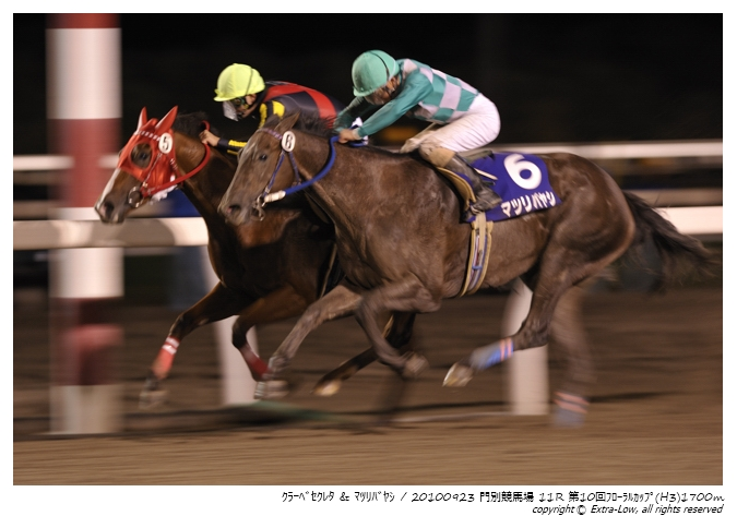 11R_Matsuri-Bayashi&Clave-Screto_100923Monbetsu_10th_The-Floral-Cup(H3-8.5F)_17315FX.jpg