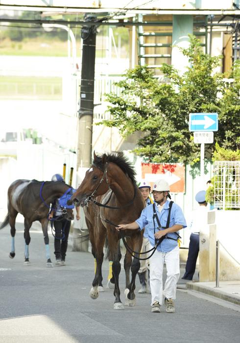 08R_After-the-Race_100719浦和_C2(7F)_12440FX.jpg