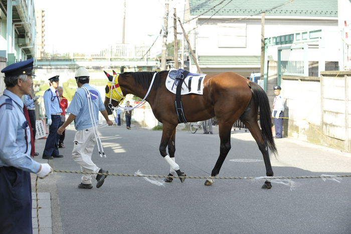 09R_Cyclone_100719浦和_特選(3歳選抜牝馬-7F)_12433FX.jpg