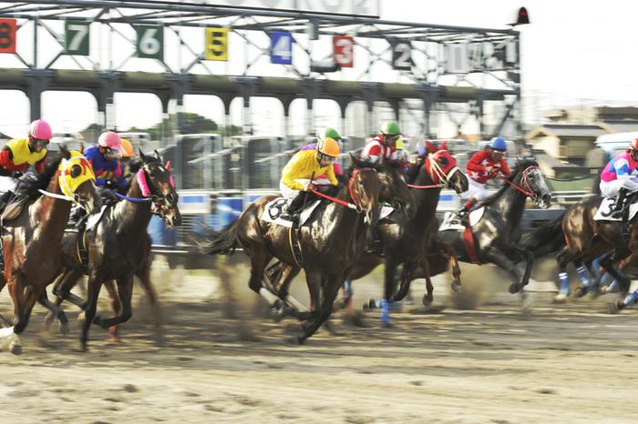 09R_Race-Gate_100719浦和_特選(3歳選抜牝馬-7F)_12471FX.jpg